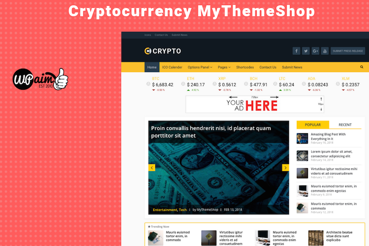 Crypto Theme Review